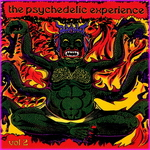 The Psychedelic Experience Vol 2