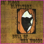 The 13th Floor Elevators - Bull Of The Woods
