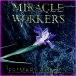 Miracle Workers - Primary Domain